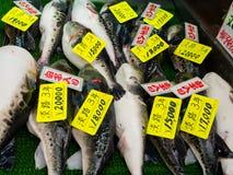 大阪,日本- 2017年7月18日:府谷鱼在一个市场上在Kuromon Ichiba市场上在大阪,日本 它是市场 库存图片