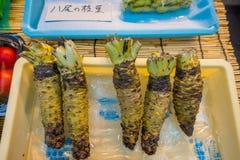 大阪,日本- 2017年7月18日:新山葵根沿街道被卖在Kuromon Ichiba市场, Nipponbashi,大阪上 免版税库存照片