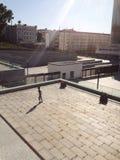 大阳台的女孩 免版税图库摄影