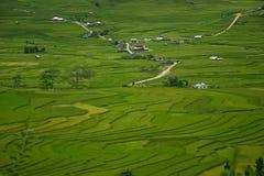 大阳台米领域在越南 免版税库存照片