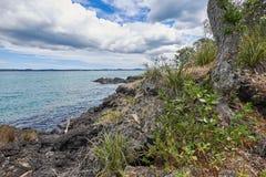大陆奥克兰市的看法从Rangitoto海岛的 免版税库存照片