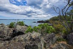 大陆奥克兰市的看法从Rangitoto海岛的 库存照片