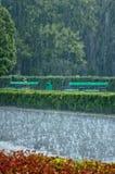 大雨在公园 免版税库存照片