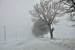 大雪和blizzard_16 免版税图库摄影