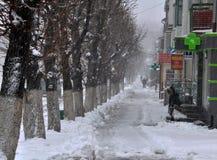 大雪和blizzard_7 库存照片