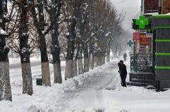 大雪和blizzard_5 免版税库存照片