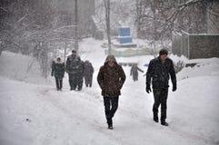大雪和blizzard_11 库存照片