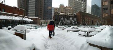 大雪在卡尔加里,亚伯大,加拿大 免版税库存照片