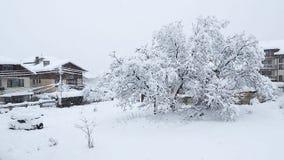 大雪在班斯科 影视素材