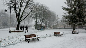 大雪秋天和暴风雪在伊斯坦布尔 股票视频