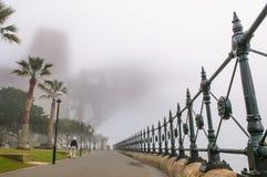大雾在悉尼港口的早晨 免版税库存图片