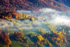 大雾,象牛奶,盖了谷,在后上升山小山 库存图片