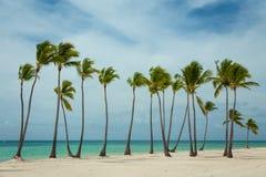 大风天在多米尼加共和国 库存照片