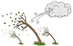 大风天树和云彩吹的风 库存照片