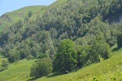 大高加索山脉的山Ilisu自然储备的,西北阿塞拜疆 免版税库存照片