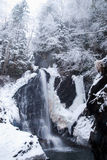 大高瀑布在有积雪的树和降雪的山冬天森林里 免版税图库摄影