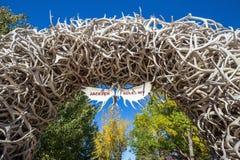 大麋鹿角成拱形在杰克逊Hole,怀俄明的曲线 免版税库存照片