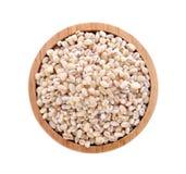 大麦五谷种子 免版税库存照片