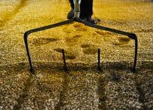 大麦含麦芽倾斜 库存照片
