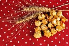 大麦和玉米花的耳朵在红色背景 库存照片