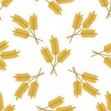 大麦或麦子耳朵的无缝的样式 免版税图库摄影