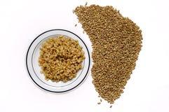 大麦批量食物 免版税库存照片