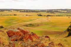 大麦调遣与岩石的顶视图 库存图片