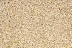 大麦谷壳 库存图片