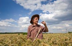 大麦领域的老人 免版税库存图片