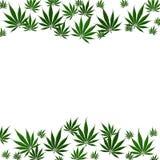 大麻叶子背景 向量例证
