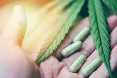 大麻留下大麻植物萃取物医疗医疗保健自然选择聚焦的手中胶囊大麻叶子 免版税图库摄影