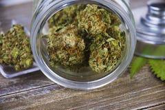 大麻芽侦察员在玻璃瓶子的大师张力在木backg 库存照片