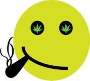 大麻面带笑容 库存图片