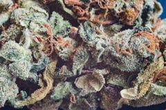 大麻,大麻宏观trichomes thc花漂白亚麻纤维重要从未变朦胧 浅焦点作用 免版税库存照片