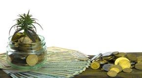 大麻,大麻, Ganja,在比尔的大麻绿色叶子100美元 到达天空的企业概念金黄回归键所有权 大麻叶子和美元 免版税库存照片