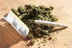 大麻 库存图片