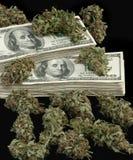 大麻4 库存照片