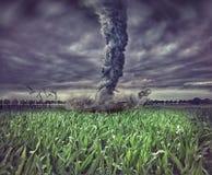 大龙卷风 库存图片