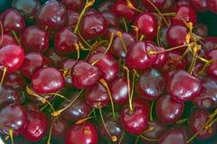 大,成熟,水多,明亮的樱桃 浆果甜点 大 图库摄影