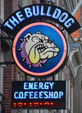 大麻咖啡店的标志 免版税库存图片