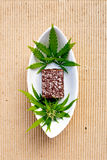 大麻-大麻-医药Edibles -椰子果仁巧克力 免版税库存照片