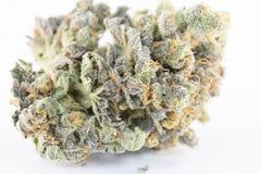 大麻宏指令86053398 免版税库存照片