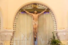 大叻市大教堂鸡教会 免版税库存照片