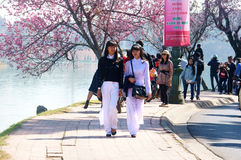 大叻市,春天花,俏丽的女孩 免版税库存图片