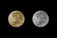 大满月在supermoon天在与黄色的2016年11月和 免版税库存照片