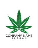 大麻有机抽象业务保险摘要 免版税库存照片