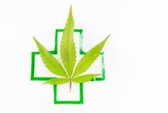 大麻种植和医疗标志 免版税图库摄影