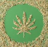 大麻籽 免版税库存照片