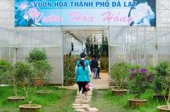 大叻花公园,越南 免版税库存图片