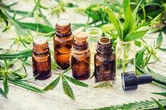 大麻草本和叶子治疗的 库存图片